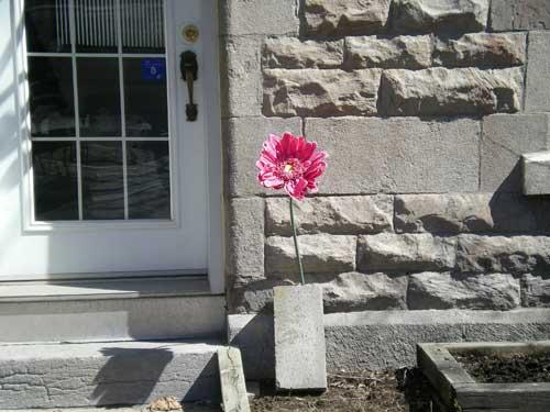 Flowerbydoor