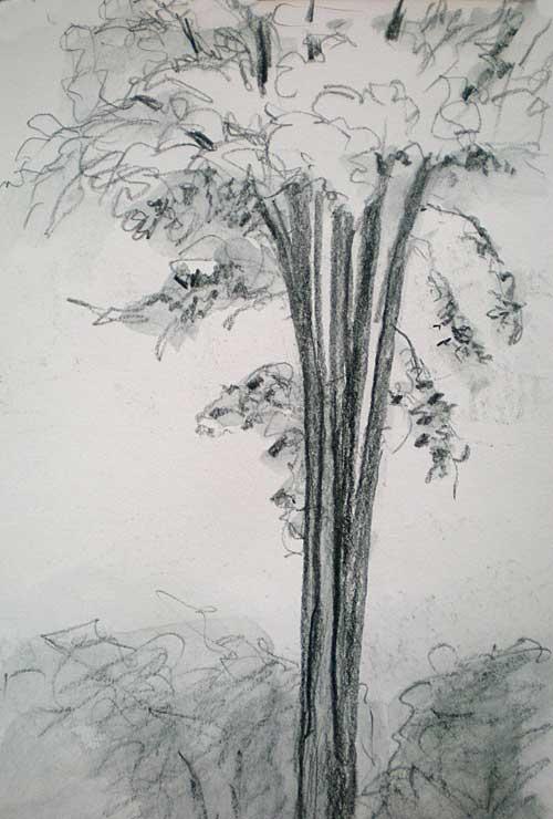 062010c