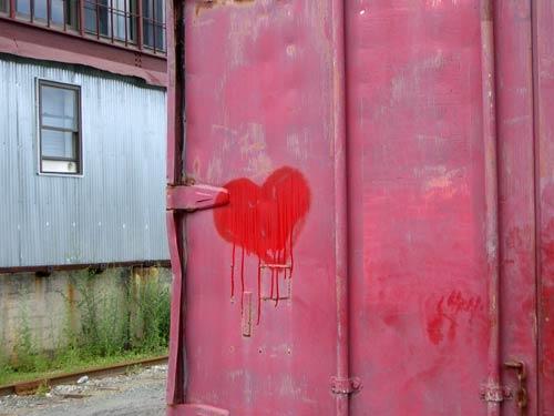 Red-bleeding-heart