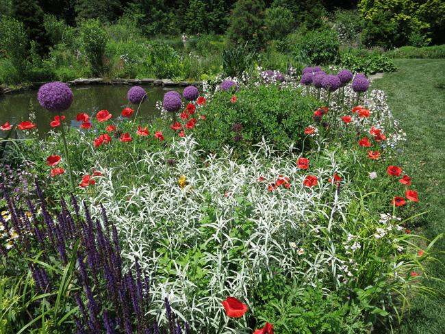 A Philadelphia Garden